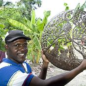 Comite Artisanal Haitien