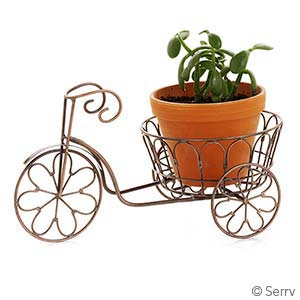 Large Tricycle Planter
