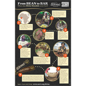 Bean to Bar Poster