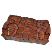 Monkey Puzzle Box