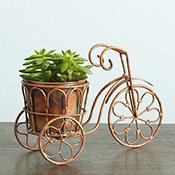 metal tricycle planter alt