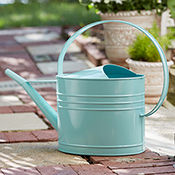 Robin's Egg Watering Can