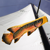 Orange Trout Wind Sock