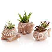 Pond Critter Planters