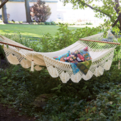 Natural Hammock